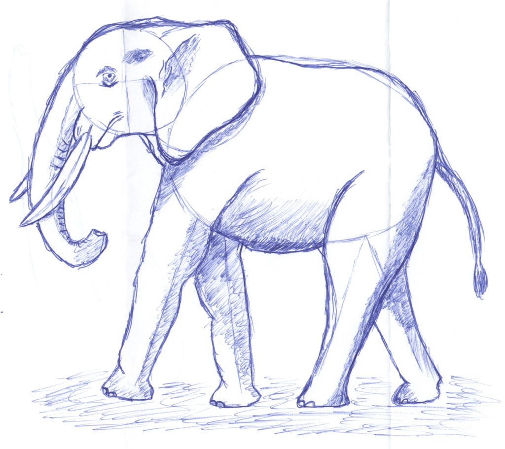 scanned image of an elephant drawn by Magic Hat Brewing Company